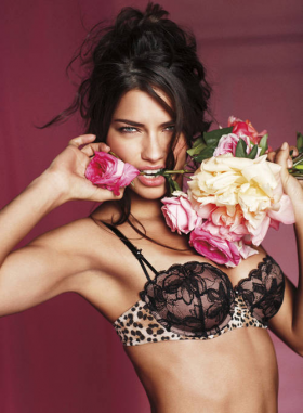 Victoria's Secret, Valentine's Day 2011 style.