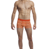 Striate Collection from Wood Underwear