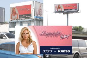 Examples of the new Exquisite Form billboards seen in Puerto Rico.