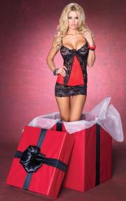Styles from Leg Avenue's 2012 holiday and Valentine's Day catalog.