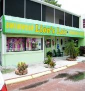 Lion's Lair - Front